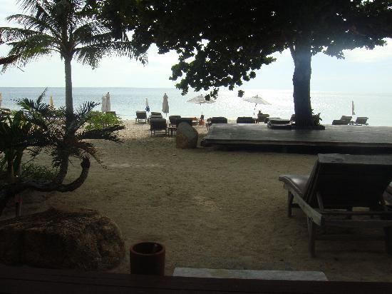 New Star Beach Resort: beachside of our villa