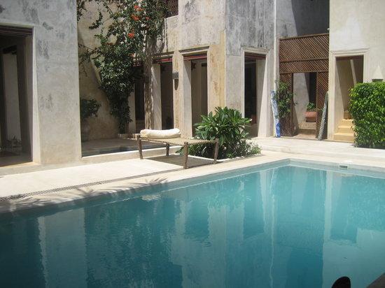 Lamu House Hotel: Pool area