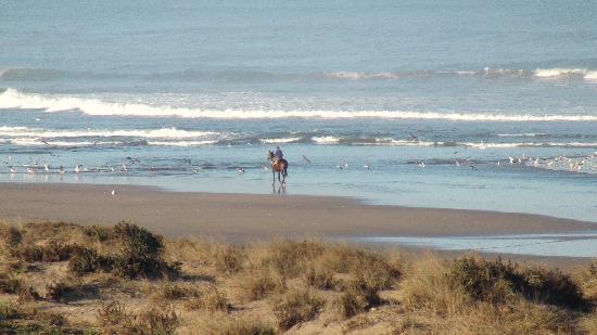 Mazagan Beach & Golf Resort: le matin en ouvrant ses rideaux