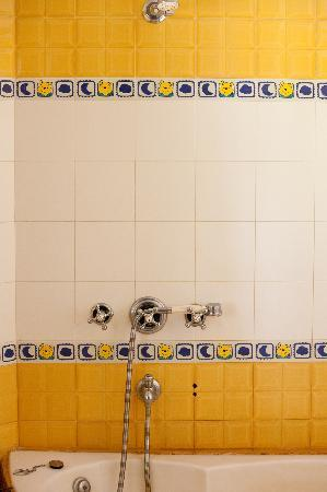 Ranthambhore Safari Lodge Bathroom Tiles 2 Part 87