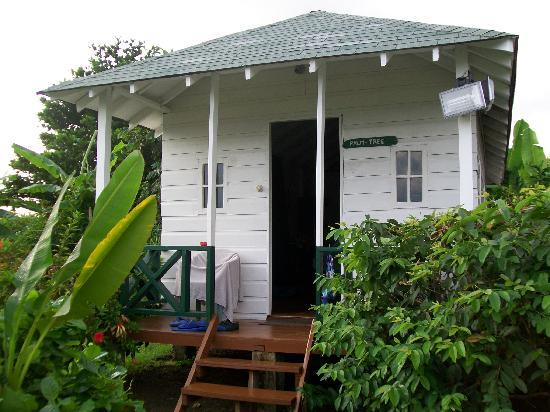 Hotel Jamaican Colors: les bungalows