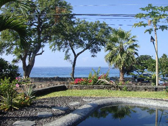 Kona Sugar Shack: Ocean View near the pool