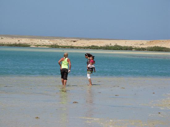 Awlad Baraka Ecolodge: Abu Ghusun lagoon