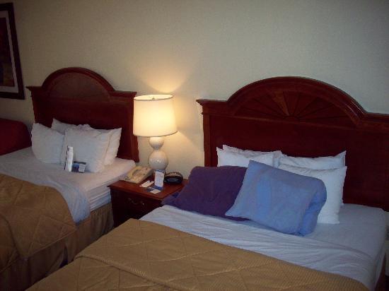 Comfort Inn & Suites Columbus: 2 queen beds