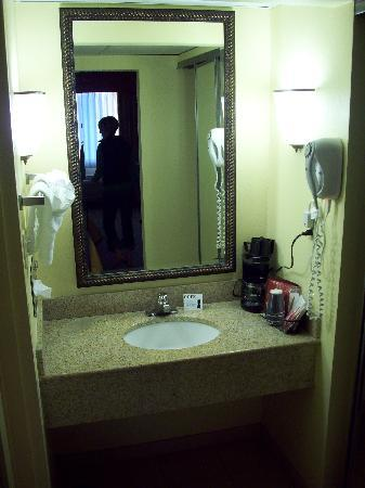 Comfort Inn & Suites Columbus: toilet and shower are separate from sink