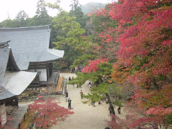 Hotel Centnovum Kyoto: 神護寺境内(紅葉が見ごろ)