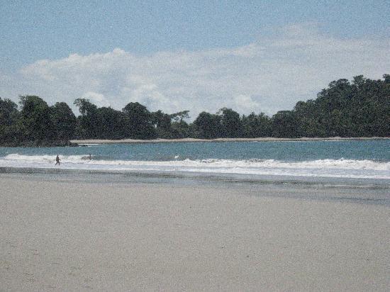 Pete's Place: Encore la plage