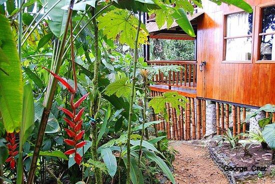 San Jorge de Milpe Eco-Lodge Orchid & Bird Reserve: San Jorge Milipe Lodge, Ecuador original lodge