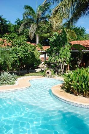 Playa Grande, Costa Rica: the pool