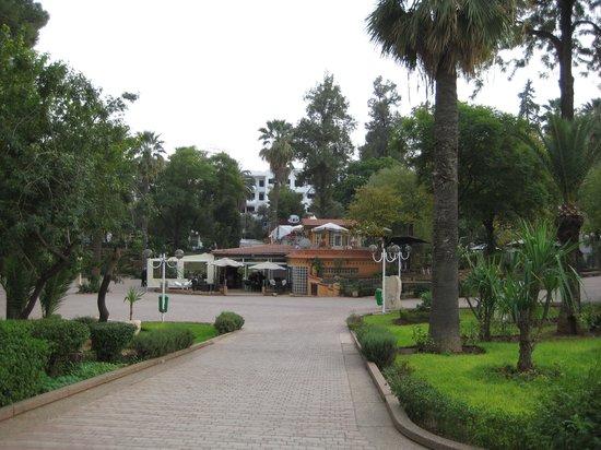 cafe central parc