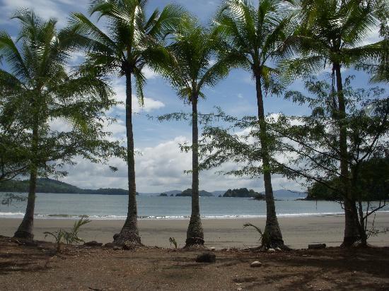 Lagartero, Panama: Playa Banco