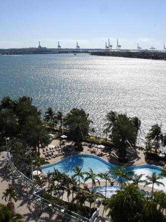Flamingo South Beach / Calico Apartments : Miami Beach, Floride, États-Unis
