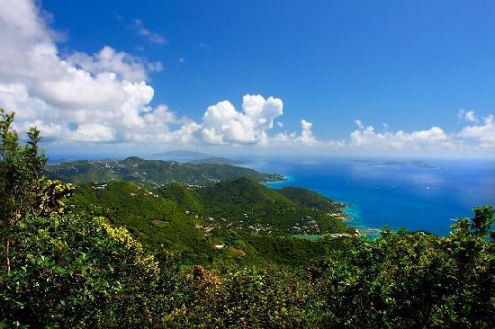 Sage Mountain Nationalpark, Tortola: View southeast from Sage Mountain.