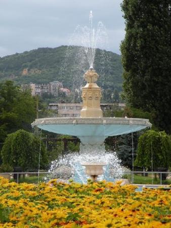 Margitsziget island budapest palatinus open air bath la for Fontaine piscine