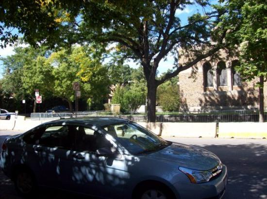Hyde Park: Hyde Park area by Obama's old house-because of the cop cars on either side you can't even be on