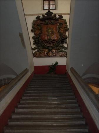 Celaya صورة فوتوغرافية