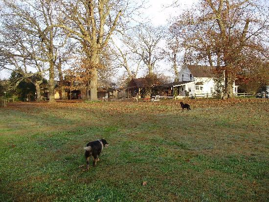 Seventy-four Ranch : The backyard of Butler House
