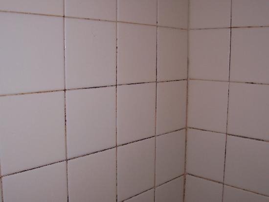 Casa Arte: the shower