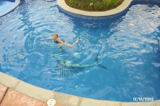 لوس باريليز هوتل: Nice pool