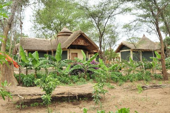 Turmi, Etiopia: A view of cabins from the garden