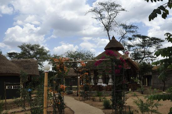 Turmi, Etiopia: A path through the cabins