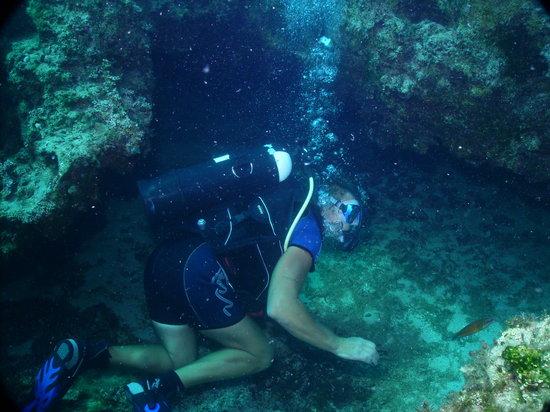 Olympian Divers
