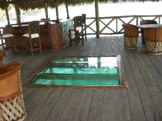 Kuuch Kaanil Villas Eco-romanticas : El bar está sobre la laguna