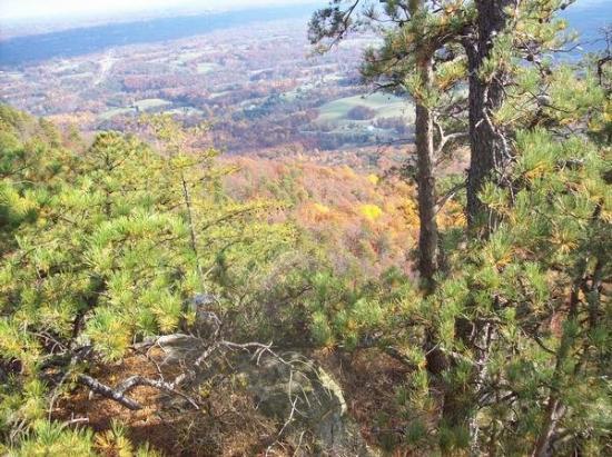 Pilot Mountain, NC: more Pilot view