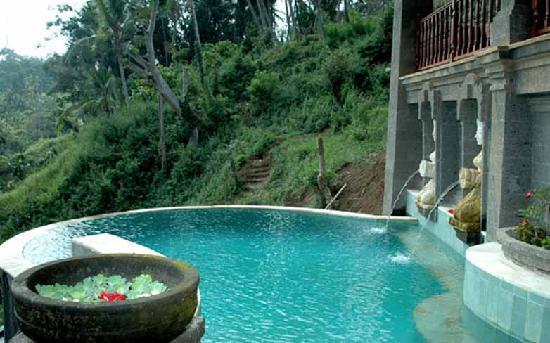 วิลลาอาวังอาวัง: pool2