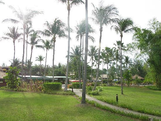 Nirwana Gardens - Nirwana Resort Hotel: Our view, small walk to beach or pool