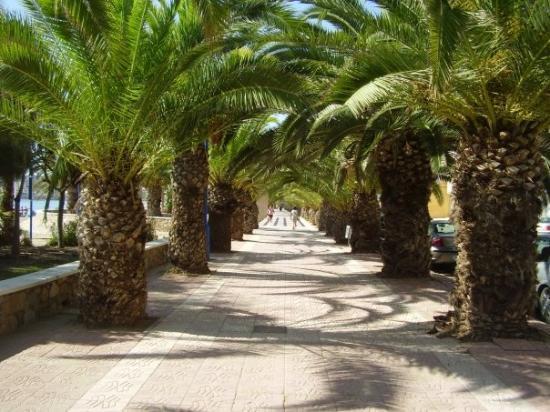 Foto de Puerto de Mazarrón