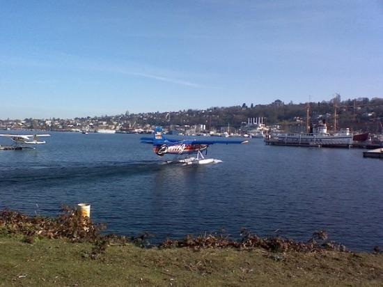 One of my fav places anywhere...Lake Union...so much activity yet so peaceful...