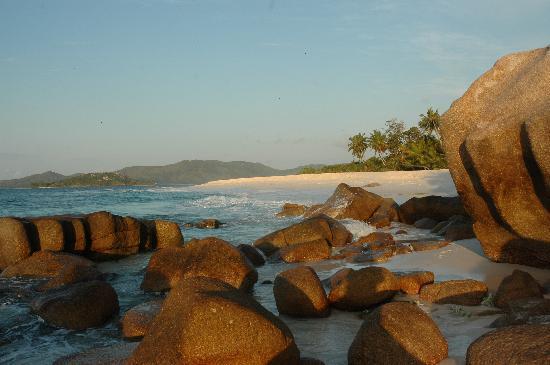 Cousine Island, Seychelles: The beach