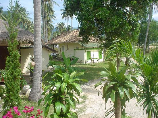 Kamala CocoHut: CocoHut Kamala Beach Bungalows for hire