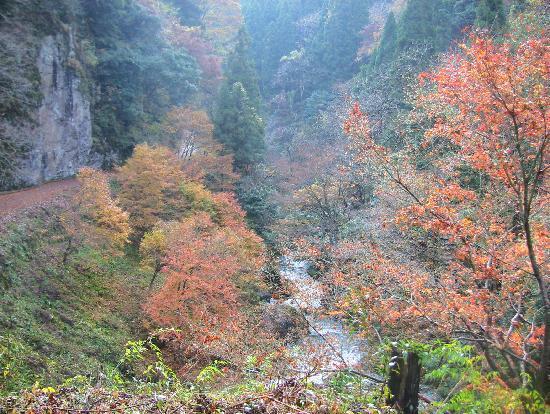 Ase Valley: 紅葉