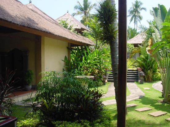 Negara, Indonesia: Landscape