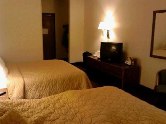 Quality Inn: Basic room