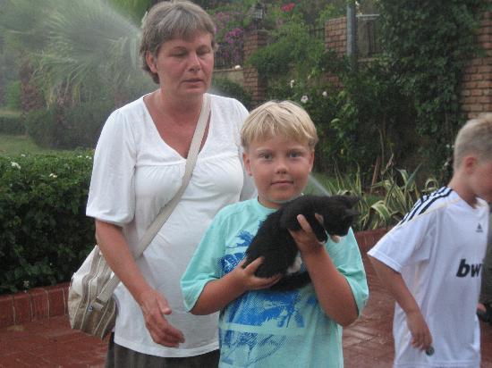 Riviera Hotel & SPA: Take care of cats near Riviera hotel
