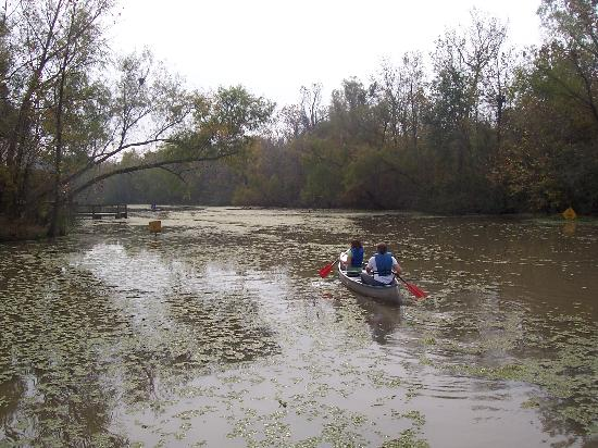 Lake Fausse Point State Park : canoeing