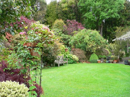 Kamahi Cottage: Garden area at Kamahi homestead & cottage