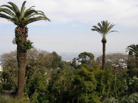 Hotel Saint George El Djazair : Sea view from the balcony of Hotel El Djazair