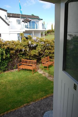 Accent on Taupo Motor Lodge : Backyard 1