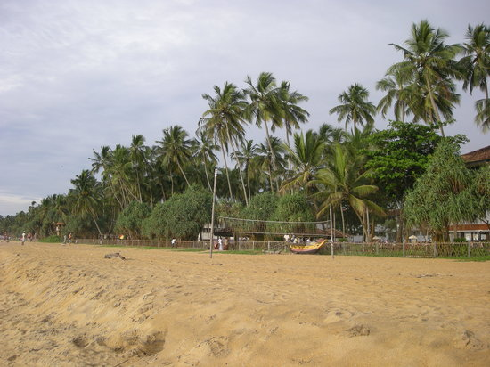 Last-minute-Hotels in Kalutara