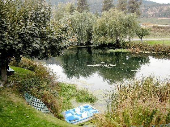 Icicle Ridge Winery: here's the pond that can be enjoyed from the deck