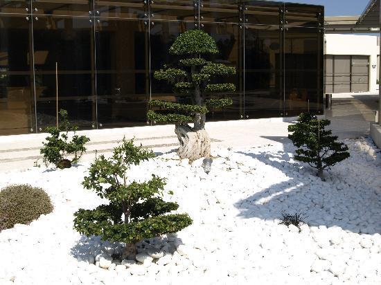 Zen Garden At Hotel Entrance Picture Of Kipriotis Village Resort