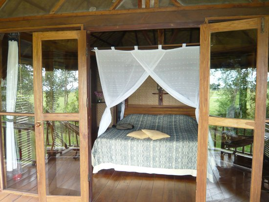 Kingfisher Ecolodge 사진