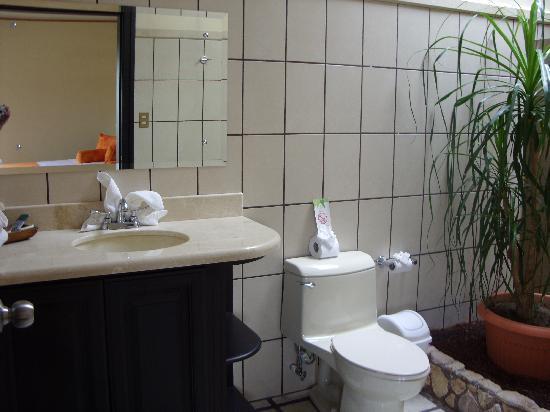 Arenal Manoa Hotel: Baño 1