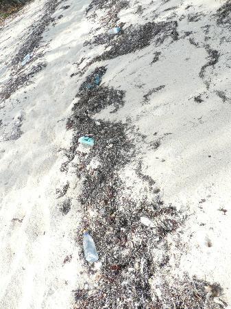 Bawe Island: Dirty beach