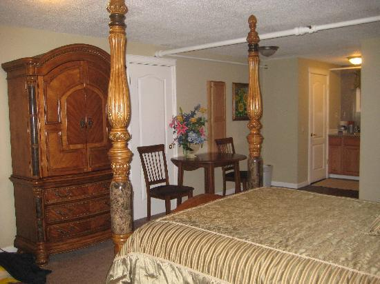 Silverton Inn and Suites: Bed/TV