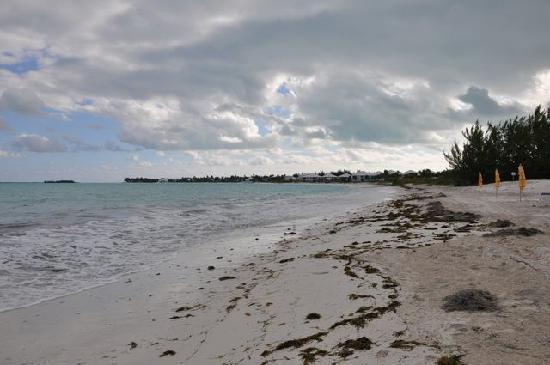 Treasure Cay Beach Marina Golf Resort La Plage De L Hôtel
